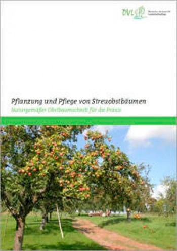 Pflanzung und Pflege von Streuobstbäumen